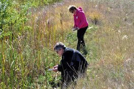 Outdoor Education Class explores prairie grass